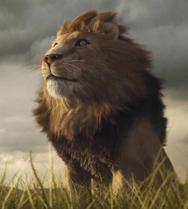León por Rodrigo Gelmi