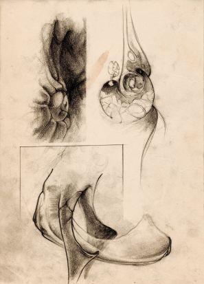 sketch_navegante3