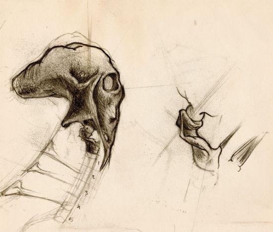 sketch_navegante4