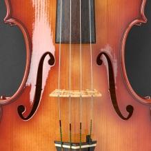 violin_final_13
